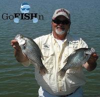 Go fish guy