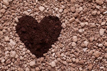 Dirt heart
